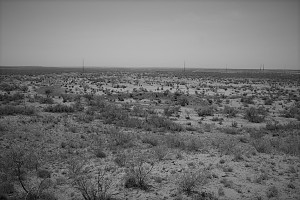 Amarillo BW